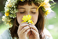Portrait of little girl with wreath of flowers smelling yellow blossom - VABF000289