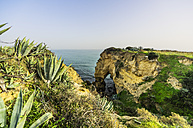 Portugal, Algarve, Coast near Porches - THAF001584