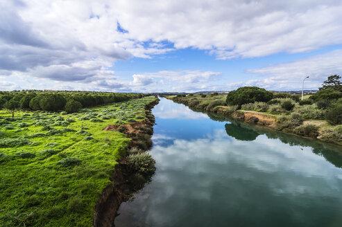 Portugal, Algarve, Landscape near Vilamoura - THAF001593