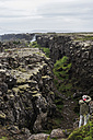 Iceland, Thingvellir rift zone - PAF001676
