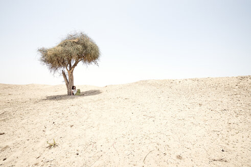 Man sitting alone under tree in the desert - BMAF000141