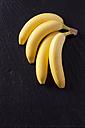 Four bananas - CSF027321