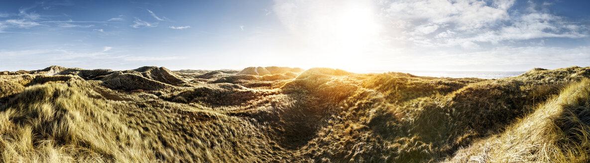 Denmark, Henne Strand, Dune landscape - BMA000210