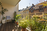 Germany, Cologne, roof terrace with potted plants - TAM000424