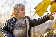 Little boy in autumnal nature - ZOCF000017