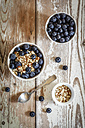 Bowl of porridge with blueberries - EVGF002885