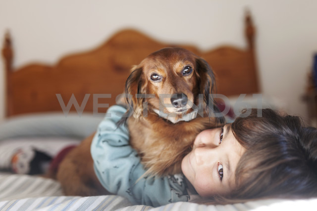 Smiling little boy lying on bed with long-haired Dachshund - VABF000380