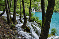 Croatia, Waterfall in Plitvice Lakes National Park with lake with turquoise water in background - RUEF001682