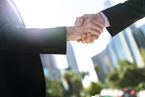 Close-up of two businessmen shaking hands - LEF000011