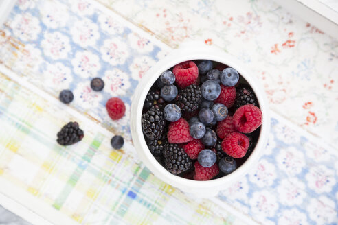 Bowl of different wild berries - LVF004682