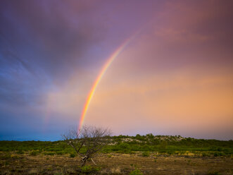 Namibia, Outjo, rainbow in Ongava Wild Reservat - AMF004817