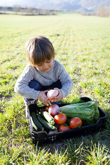 Boy crouching on meadow with basket full of vegetables - VABF000410