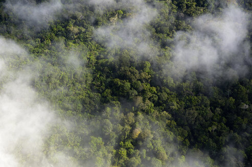 Brazil, Para, Amazon rainforest and clouds - FLKF000666