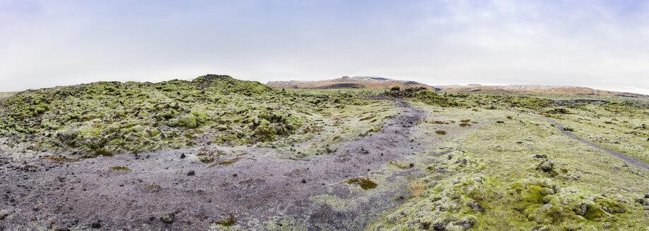 Iceland, mossy lava fields - EPF000047