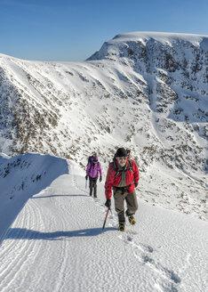United Kingdom, Scotland, Ben Nevis, Carn Mor Dearg, mountaineers - ALRF000380