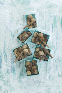 Boxes of walnuts, star anise and cinnamon sticks - ASF005878