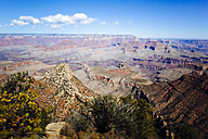 USA, Arizona, Grand Canyon National Park - GIOF000816