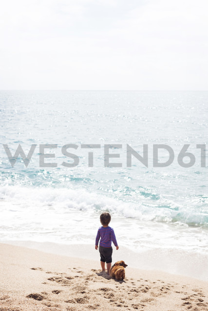 Back view of little boy standing beside his dog on the beach looking at the sea - VABF000433