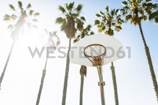 USA, Los Angeles, basketball hoop - LEF000088