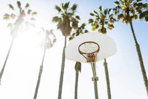 USA, Los Angeles, basketball hoop - LEF000088