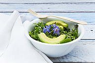 Detox Bowl of different lettuces, vegetables, cress, quinoa, avocado and starflowers - LVF004759