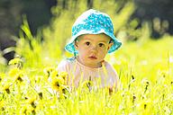 Portrait of baby girl wearing hat on flower meadow - WWF003948