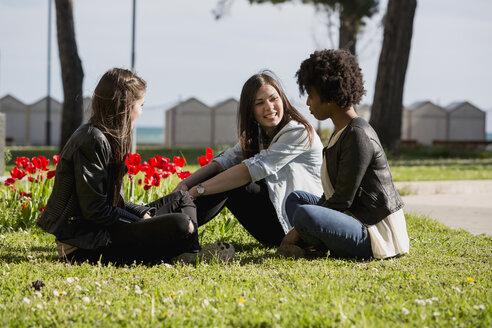 Three girl friends sitting on grass talking - MAUF000443
