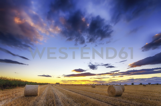 Scotland, East Lothian, hay bales on field at sunset - SMAF000461