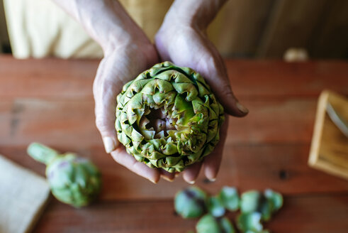Woman's hands holding an artichoke, close-up - KIJF000353