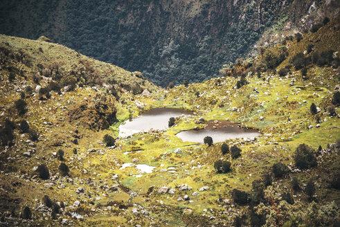 Peru, Huaraz, vegetation at the highland region - EHF000335
