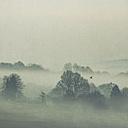 Gernany, North Rhine-Westphalia, Morning fog over fields - DWIF000731