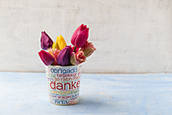 Different tulips in a printed cup - MYF001458
