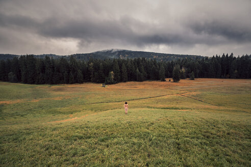 Rear view of nude man standing on meadow - WV000767