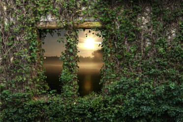 Sunset with view through old window, overgrown with ivy - KLR000304