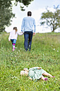 Doll lying on meadow while man going away with little girl - MAEF011553