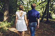 Back view of couple in love walking hand in hand in the forest - GIOF000963
