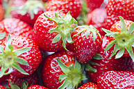 Strawberries, close-up - CZF000248