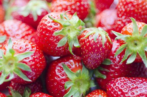 Strawberries, close-up - CZF000248