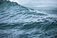 Bulgaria, Black Sea, wave - BZF000285