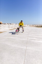 Inline-skater with his bull terrier - MGOF001842
