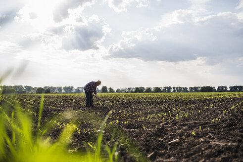 Farmer working in a field - UUF007340