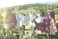 Italy, Tuscany, laundry drying on washing line - RIBF000400