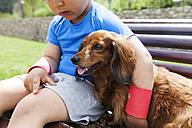 Little boy with dog sitting on a bench - VABF000495