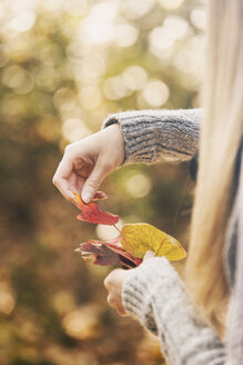 Teenage girl sorting autumn leaves - SELF000094