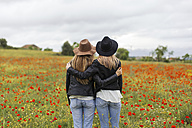 Two woman standing on a poppy field, embracing - JPF000155