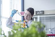 Lab technician examining sample - SGF002052