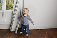 Smiling toddler boy playing peek-a-boo behind the curtain - LITF000330