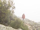 Spain, Sierra de Gredos, man hiking in fog - LAF001635