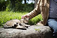 Mature man petting a cat - RAEF001174