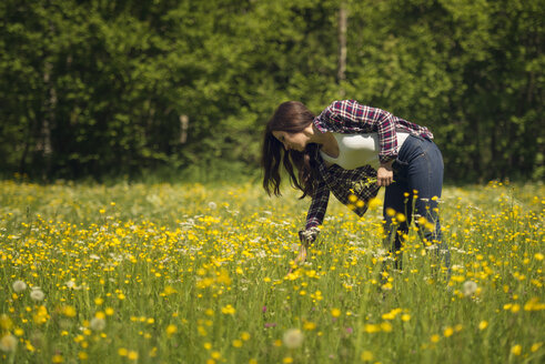 Woman on a meadow picking flowers - OPF000113